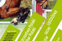 kucyki082014-plakat